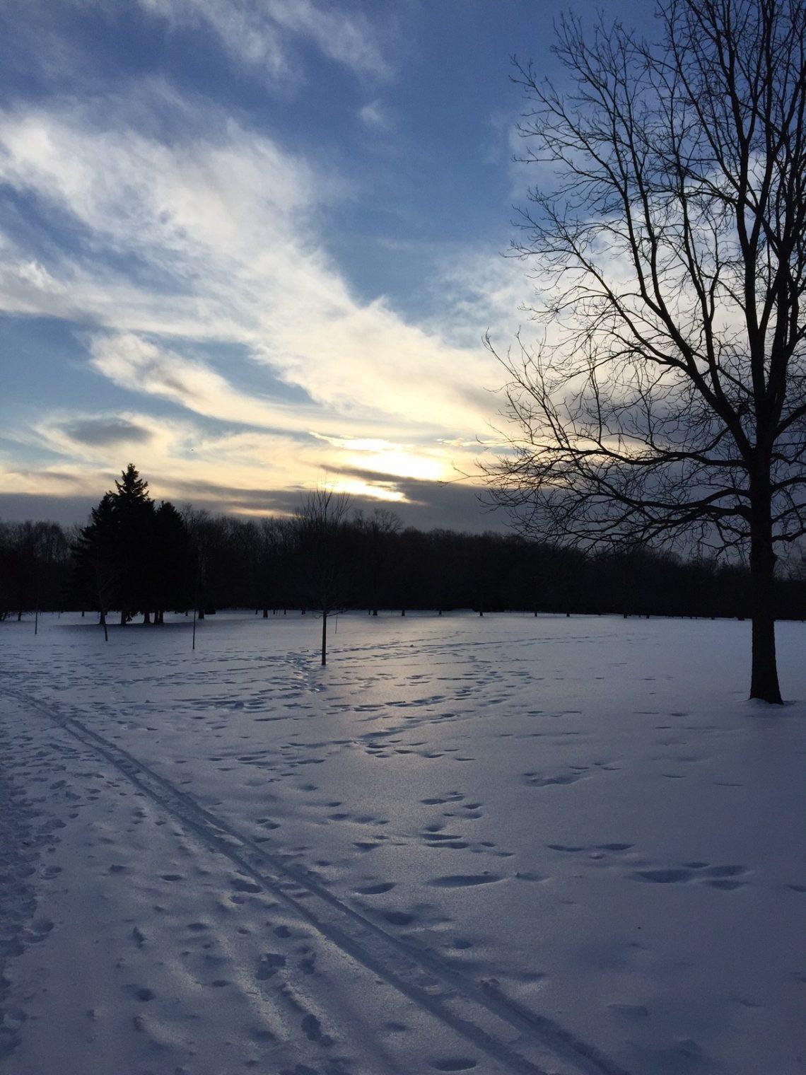 Sunnybrook park upper field