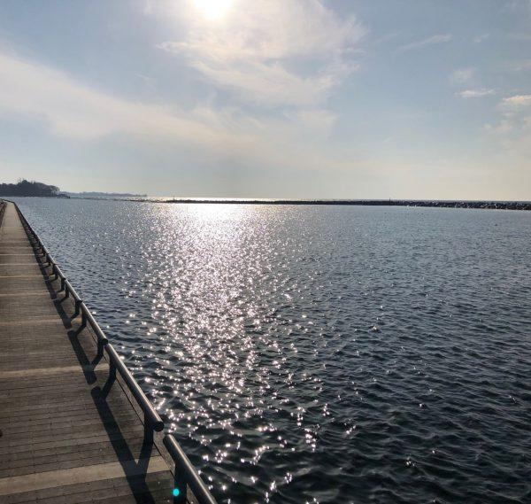 Lakeshore West